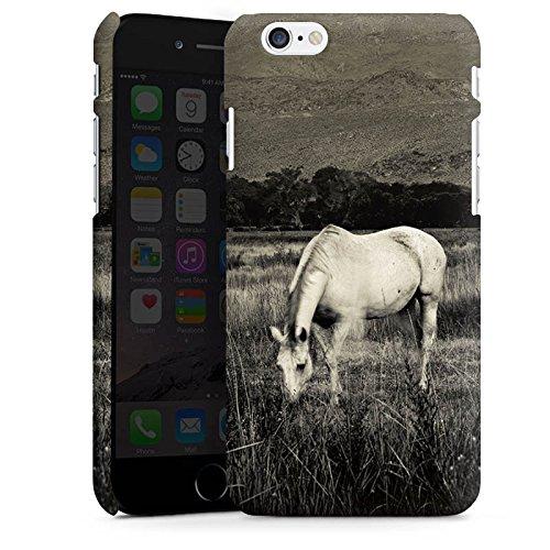 Apple iPhone X Silikon Hülle Case Schutzhülle Pferd Stute Hengst Premium Case matt