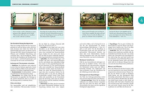 Aquarium, Das große GU Praxishandbuch - 5