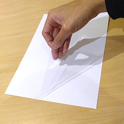Paquete de 10 hojas de vinilo transparentes