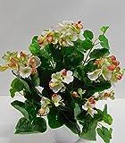 Ziegler Geranie Seidenblume Kunstpflanze Creme Weiß Rot 35 cm ungetopft 155571WR F44