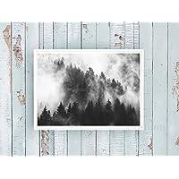 Kunstdruck / Poster FOREST N°6 -ungerahmt- Wald, Tannen, Nebel, Bäume, skandinavisch, nordisch