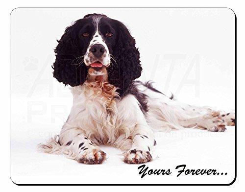 Springer Spaniel Dog ' tuo per sempre ' Tappetino mouse del computer pad regalo
