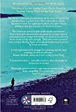 The Shore by Sara Taylor front cover