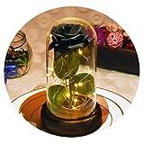 CU Twice 2019 La Bella y la Bestia Rosa roja en una cúpula de Cristal con luz LED Base de Madera para Regalos del día de la Madre de San Valentín, Rosa Negro