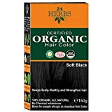 Best Organic Hair Dye - Indus Valley Hair Color Black/150 gram Review