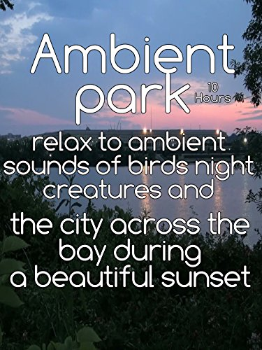 relax-to-ambient-sounds-of-birds-night-creatures-and-the-city-across-the-bay-during-a-beautiful-suns