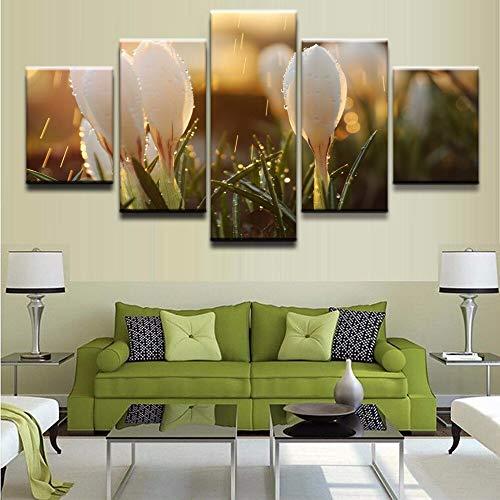 mmwin Leinwand Wandkunst Bilder Wohnkultur Wohnzimmer 5 Stücke Natur Blumen Sind Im Regen s Moderne HD Drucke Poster