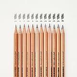3001–12tn fine art crayon en bois de cèdre et le corps variés la dureté du Stylo Conseils pour esquisse Art Création de emballés dans un magnifique fer Box-lightwish