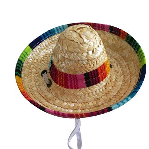 Uzinb Paja Tejida Mexicana Mascotas Sombrero Sol Hebilla