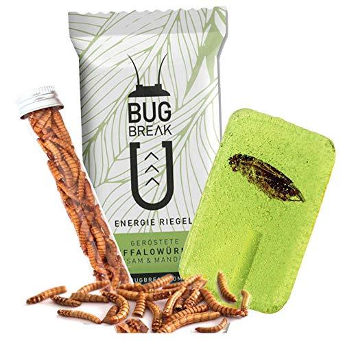 Essbare Insekten Snacks: Mehlwürmer, Insektenriegel & Insektenlutscher - Insekten zum Essen von SNACK insects