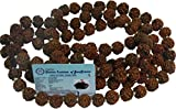 100% Original Rudraksha Mala in 5 Mukhi Small 12 MM Beads with certificate.