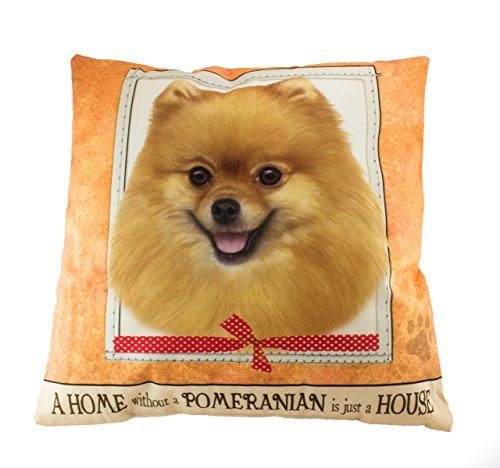es-imports-15-dog-breed-pillow-pomeranian-by-es-imports