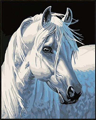 DIY Malerei, Gemälde von Nummer Kits-Weißes Pferd 16x20 Zoll (ohne Holzrahmen)