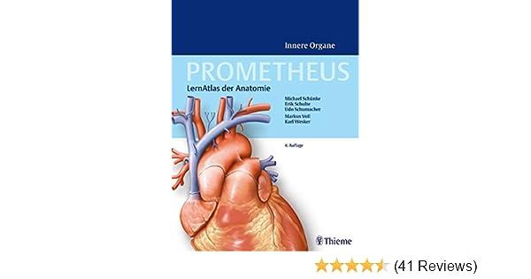 Prometheus - LernAtlas der Anatomie: Innere Organe: Amazon.de ...