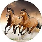 CS-Dekor Tortenaufleger Pferde 009