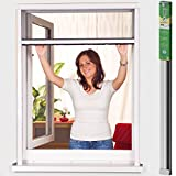 easy life Moustiquaire enroulable pour fenêtres en différentes tailles greenLINE avec cadre en aluminium et maille en fibre de verre (forage nécessaire), Taille:160 x 170 cm