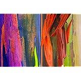 800+ Semillas Raras eucalipto del arco iris de colores deglupta árbol de rápido crecimiento