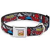 Buckle Down 22,9–38,1cm AVA-Marvel Comics Hund Halsband