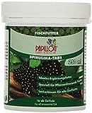 Papillon Spirulina-Tabs 250 ml, 2er Pack (2 x 250 ml)
