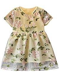 Vestido Para Bebé NiñAs DRESS Start® Vestido Floral Bordado Boda Mangas Cortas Tela Doble Vestido De Tul De Tutú Fiesta Infantil Elegante…