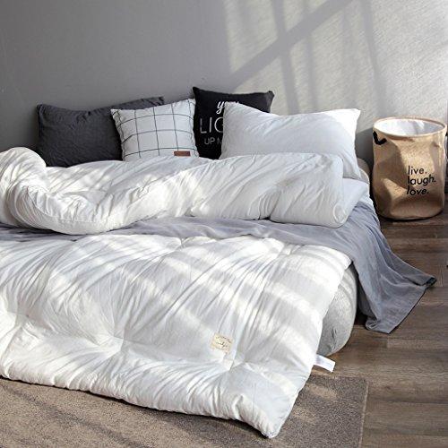 MMM Nordic Thicker Washed Quilt Core Individual Double Quilt Étudiant Chambre Dormant Printemps Et Automne Hiver Conservez une literie chaude (Couleur : Blanc, taille : 220 * 240cm(4kg))