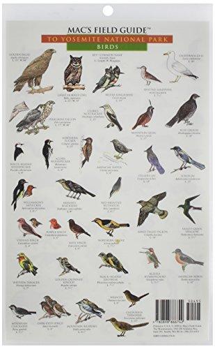 Yosemite National Park: Birds & Mammals (Mac's Guides (Paperback)) por Craig MacGowan