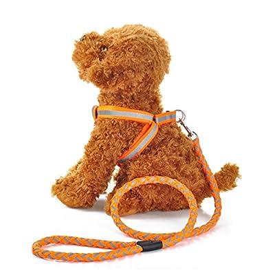Reflektierendes Zugseil Polyester gewebte Hundeleine Haustier Brustgurt Rundseil Hund Kette