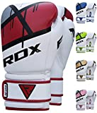 Rdx Boxing Gloves Review and Comparison