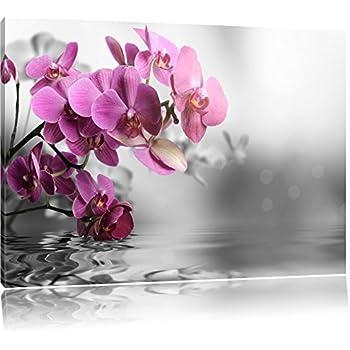 Fleurs Dorchidées Sur Leau Noir Blanc Taille 60x40 Sur Toile énorme Xxl Photos Complètement Encadrées Avec Civière Art Impression Sur Murale