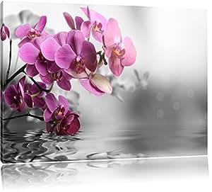 Fiori di orchidee per l'acqua nero / bianco Formato: 60x40 su tela, enorme Immagini XXL completamente Pagina con la barella, stampe d'arte su murale con la struttura, più economico di pittura o pittura ad olio, nessun manifesto o poster