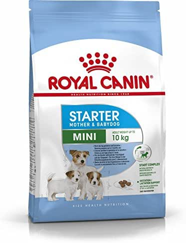 Royal Canin : Croquettes Mini Starter Mother & Baby: 3kg