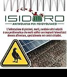 Isidoro Kit anti pigeons, universel, inoxydable, pour panneaux photovoltaïques de marque Accessoires nécessaire à l'installation inclus - 42 mt. di perimetro noir...