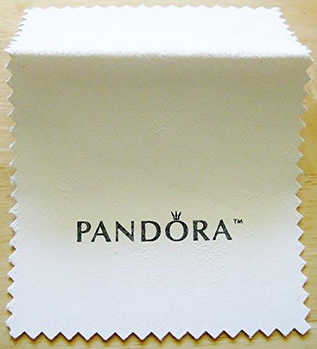 pandora-silver-jewelry-charms-polishing-cloth