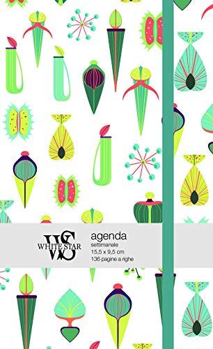 piante grasse. agenda settimanale 2019