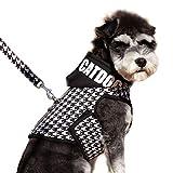 DINGG PET Brustgurt mit Traktionsseil, magischer Aufkleber, geeignet für kleine und mittelgroße Hund Teddy Snow Nari 4 Größen,M