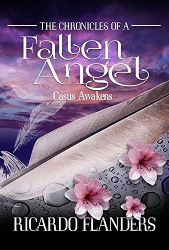 The Chronicles of a Fallen Angel (English Edition) eBook: Ricardo ...