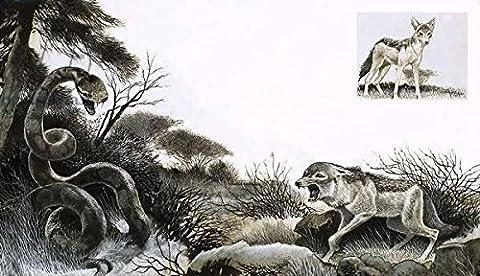 Alu-Dibond-Bild 90 x 50 cm: