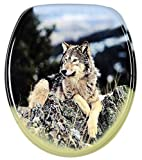 Soft Close Toilet Seat | Stable Hinges | Easy to mount | Wolf