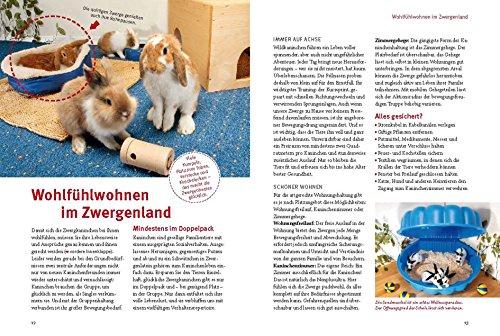 Spiel- und Wohnideen für Zwergkaninchen (GU Tier aktiv) - 5