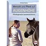 Lerntraining für Pferde Lernübungen Tests Ratgeber Tipps Buch Mein Pferd kann/'s