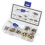 Juego de 40 piezas HSeaMall (núcleos de válvula y herramienta de extracción de núcleos de válvula) para aire acondicionado de coche, R12 R134a