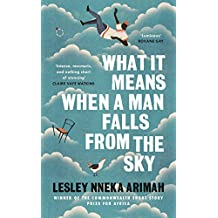 What It Means When A Man Falls From The Sky: An Observer Best Holiday Read Summer 2017
