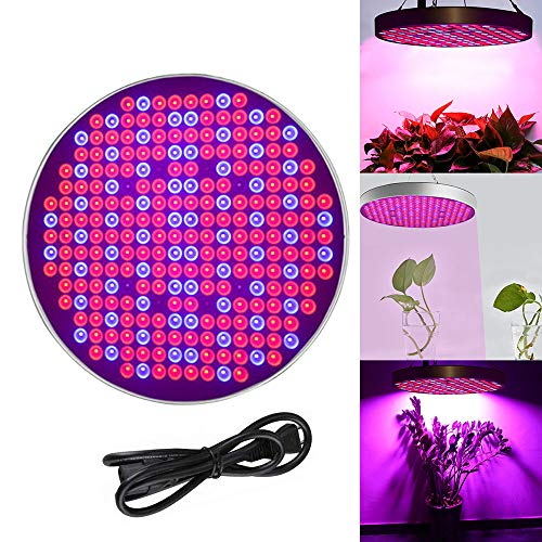 zenlampe Innengarten Pflanze Wachsen Licht Multiple Spektrum 250 LEDs Grow Light Panel für Zimmerpflanzen Gewächshaus Pflanzenlabor Gemüse und Blumen(Blau+Rot+UV+IR, Runde) ()