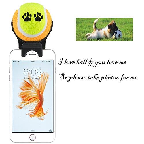 EPLG Smartphone Attachment Selfie Stick for Pet - Pet Selfie Stick - Pet agility training - pet toy (yellow orange)