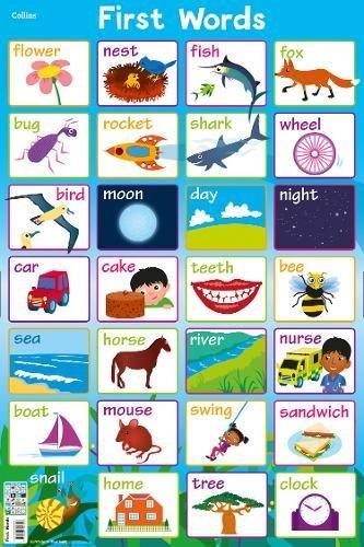 First Words (Collins Children's Poster)