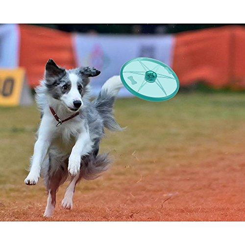 Decdeal Hunde Frisbee mit LED Licht Discdogging und Fri… | 00721047858521