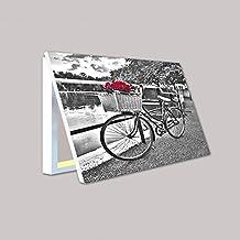 Molduras y cuadros Garcia - Cubrecontador bicicleta con rosas rojas (DV IG5623) - Madera - Color - Blanco - Tamaño - 50X35X4