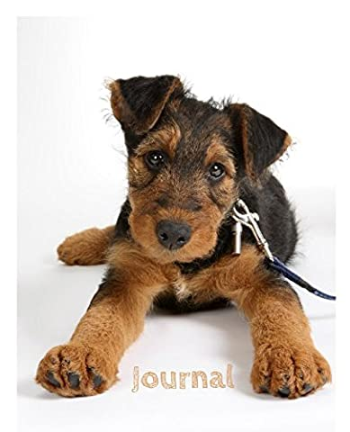 Journal: Airedale Terrier Puppy