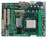 Biostar GF8200 M2+ Socket AM2 microATX - Placa Base (16 GB, AMD, AMD Athlon X2 Dual-Core,AMD Sempron, Socket AM2, 10/100/1000 Mbps, Realtek RTL8111C)