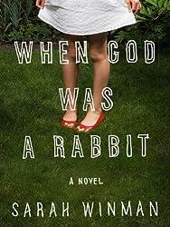 When God Was a Rabbit: A Novel